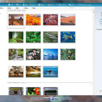 New Arrivals in Windows Live Suite