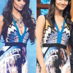 Malaika Arora Khan and Vaani in same dress
